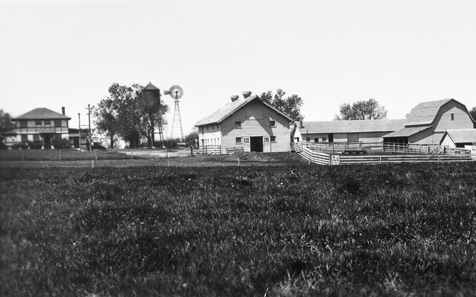 Havelock Experiment Station Farm