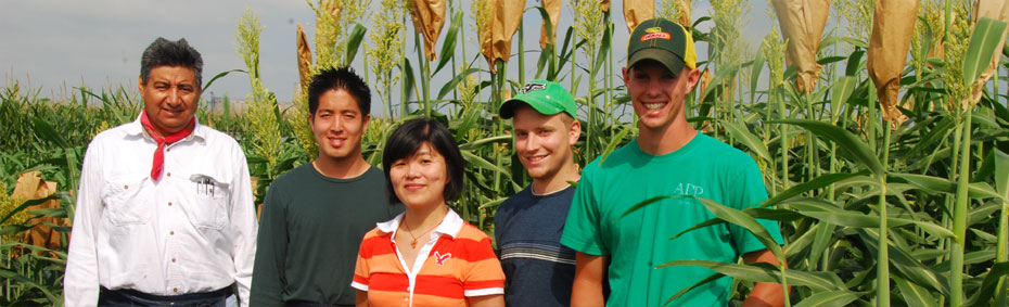 Students in cornfield