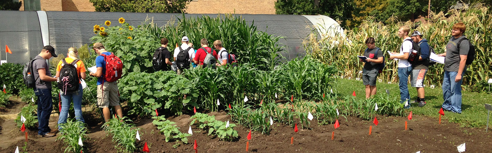 Future Undergraduates Teaching Garden