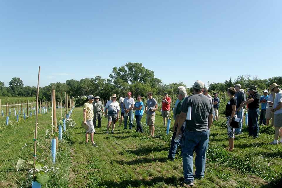 Ben Loseke presenting at Viticulture Field Day, July 11, 2015