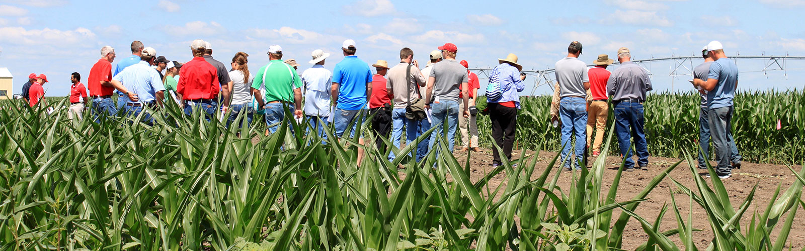 weed management field day