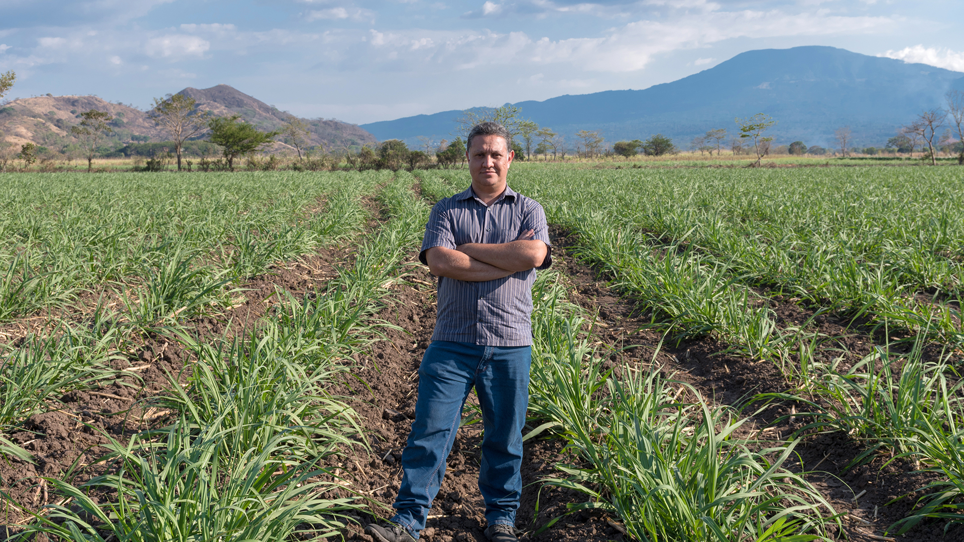 On his farm near Santa Ana,  El Salvador, Carlos Martinez stands in a sugarcane field plowed with a tractor and machinery he built.  Carlos Eduardo Somoza Vargas