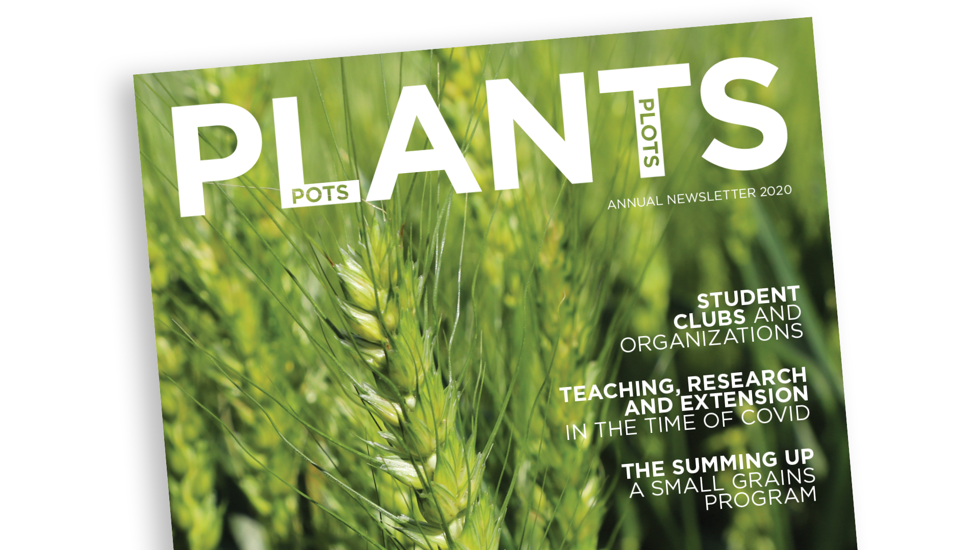 Agronomy and Horticulture Annual Newsletter 2020