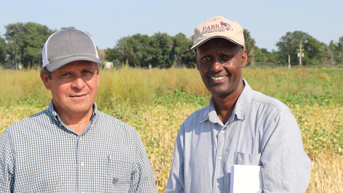 Nebraska's Carlos Urrea (left) and Teshale A. Mamo, a bean breeder and research coordinator from Tanzania, Africa, tour Urrea's research plots at Scottsbluff.