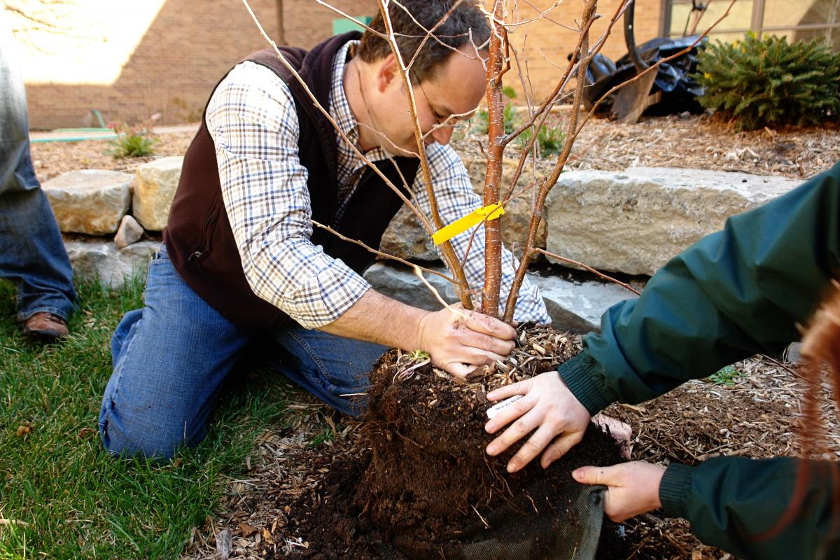 "Hands-on tree planting training will be offered as part of ""Re-Tree the Family Fun Zone"" Oct. 21 in Grand Island. (Justin Evertson)"