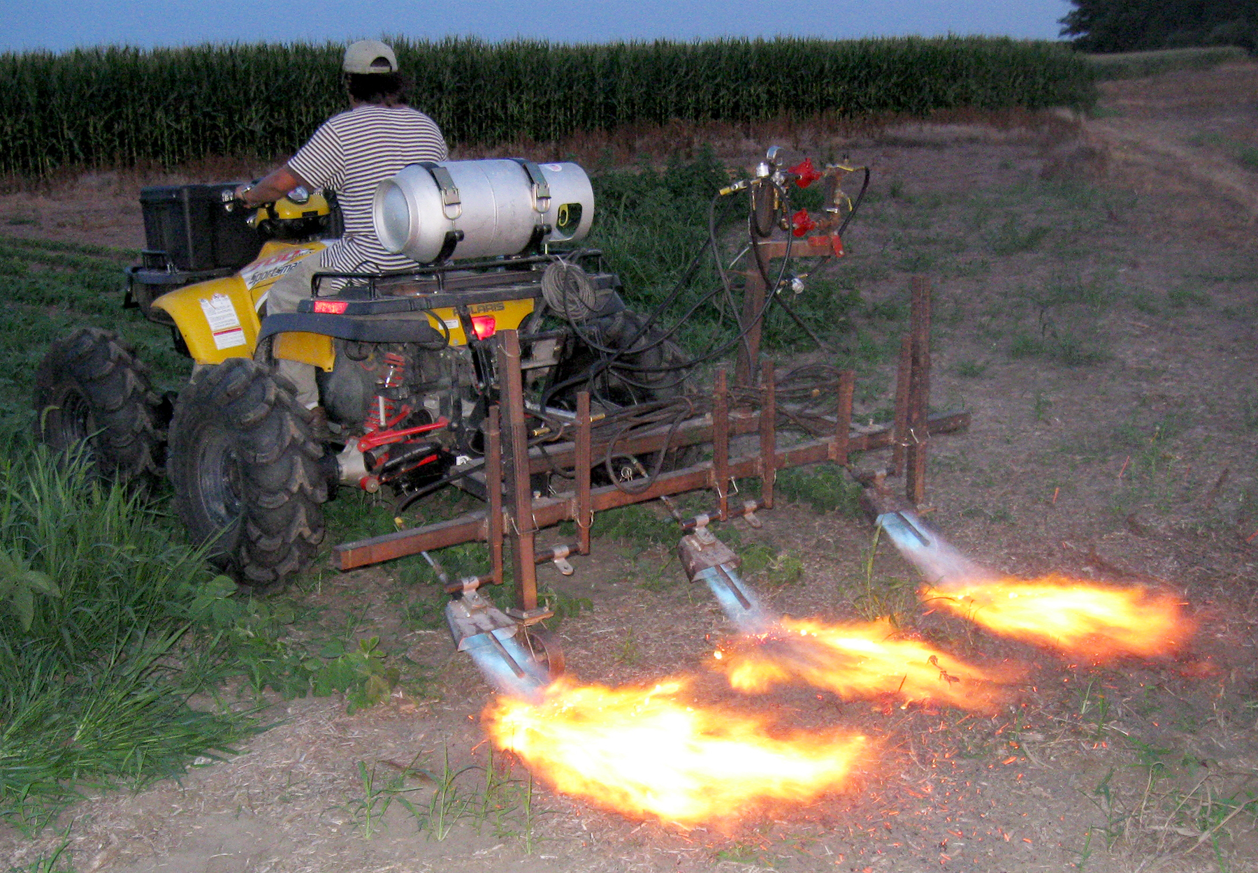 A three-row flamer mounted on an ATV is tested in the field. Tests were conducted in the evening to better observe flame shape as the flame hits the ground. (Photos by IANR Staff)