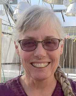 Carol Morgenson