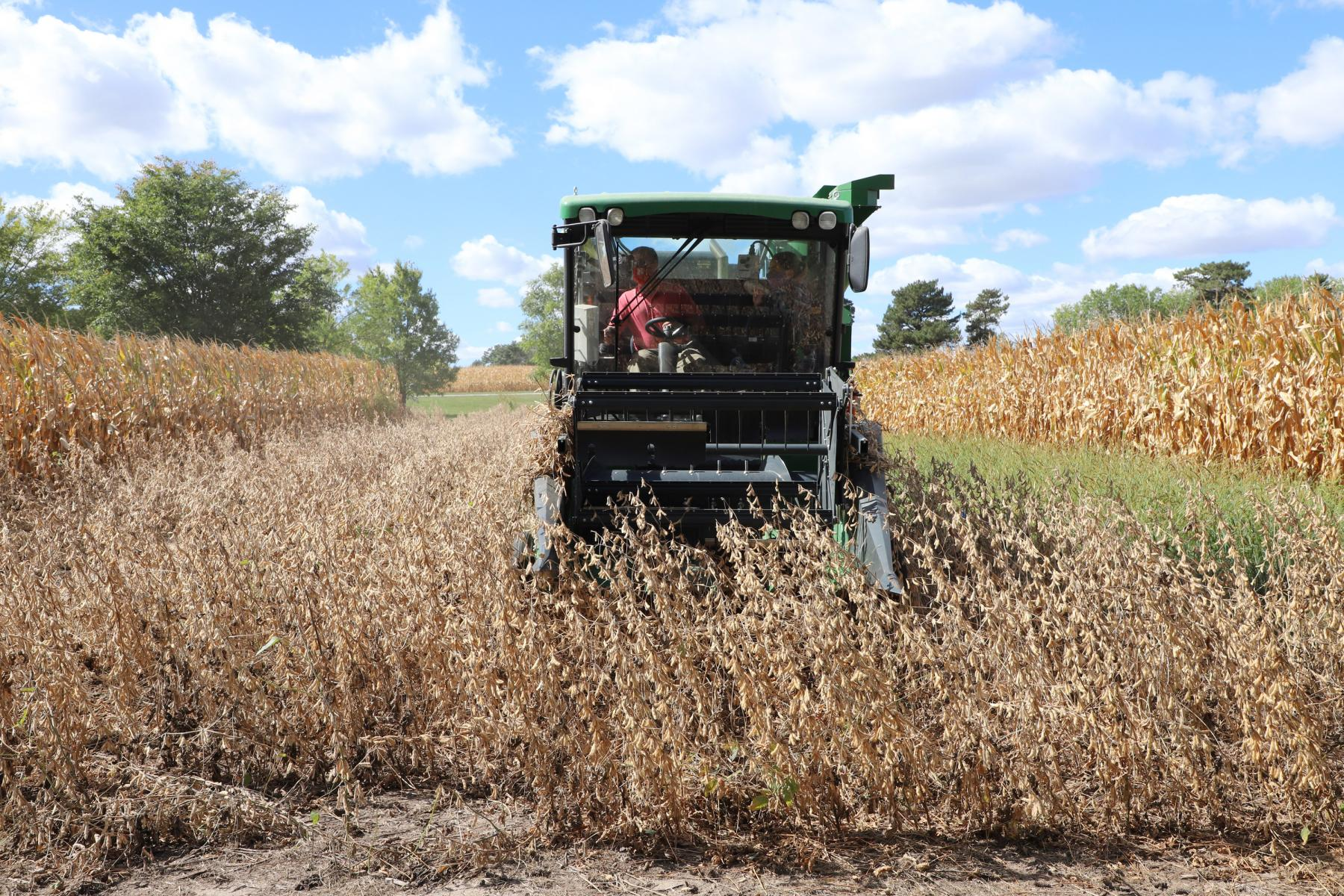 Joshua Reznicek and Alyssa Kuhn harvest soybeans on East Campus