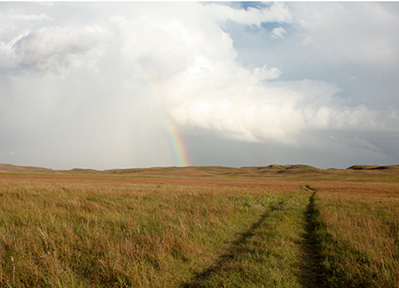 Rangeland and rainbow