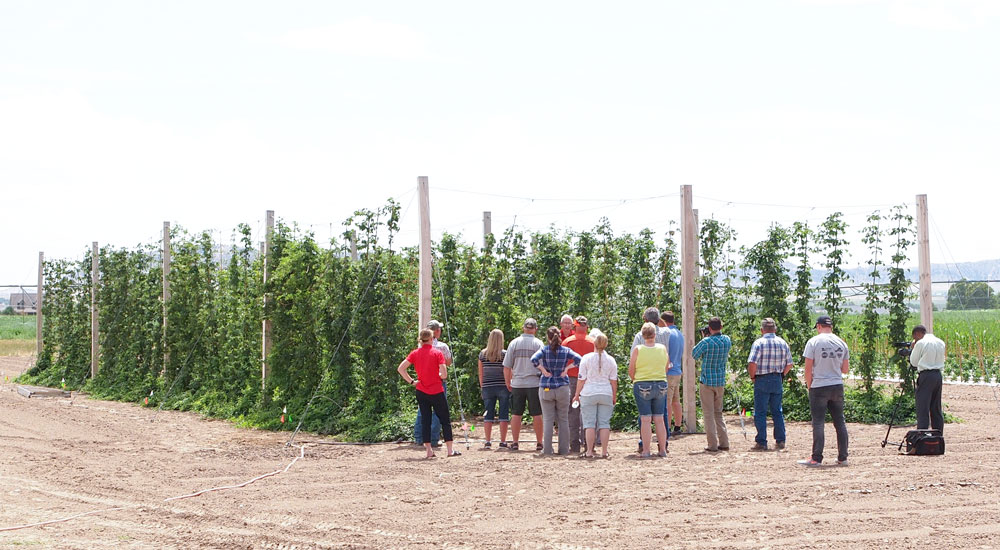 Workshop in the Panhandle Research and Extension Center Hops Yard.