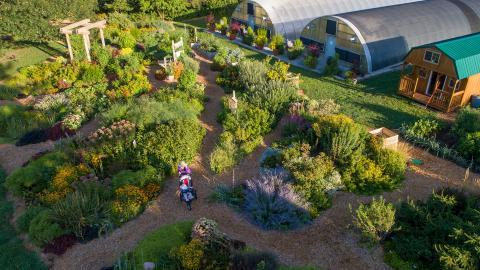 BYF Garden
