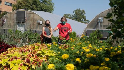 agronomy and horticulture