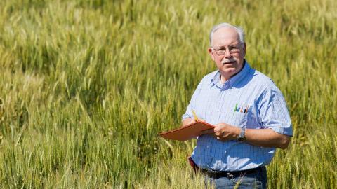 Nebraska's P. Stephen Baenziger has developed wheat varieties that are used on more than 50% of Nebraska's wheat acres.