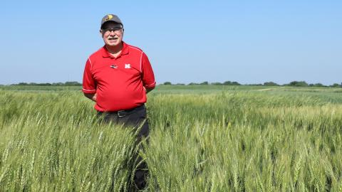P. Stephen Baenziger will retire May 3 after 35 years of service to the university. Lana Koepke Johnson | Agronomy and Horticulture