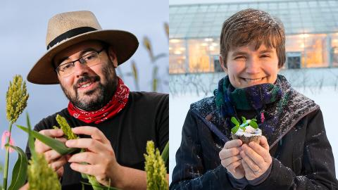 James Schnable (left), Rebecca Roston and their colleagues have developed a machine-learning model that, given just the DNA sequence of a single plant species, can predict how another's genes will turn off and on in the face of freezing temperatures.