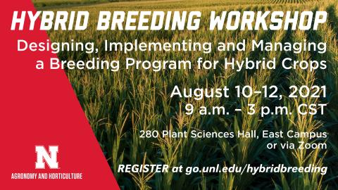 Hybrid Breeding Workshop begins August 10