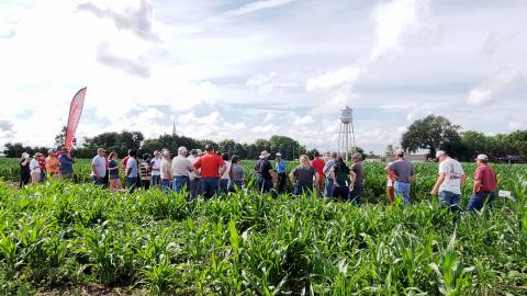 Amit Jhala discusses a project for control of herbicide-resistant Palmer amaranth in a field near Carleton, Nebraska.