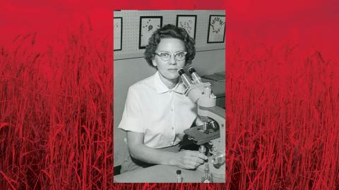 M. Rosalind Morris | Photo courtesy of UNL Archives & Special Collections