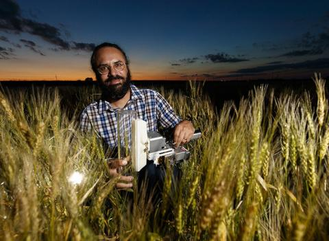 Harkamal Walia, associate professor in agronomy and horticulture and faculty fellow in the Daugherty Water for Food Global Institute, will present this fall's first Agronomy and Horticulture Seminar. Craig Chandler | University Communication