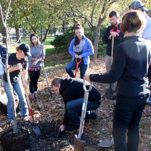 Students in Kim Todd's landscape design class