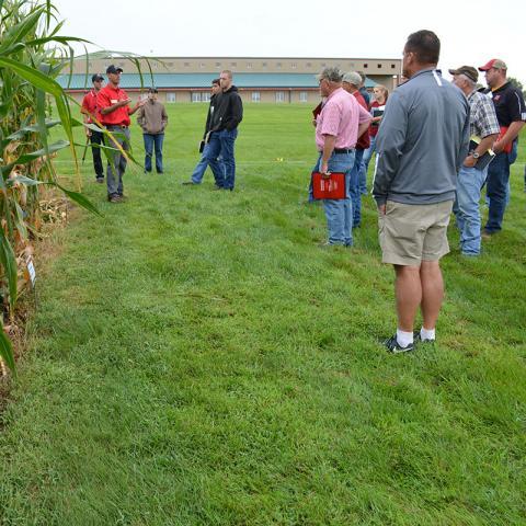 Crop Management Diagnostic Clinics