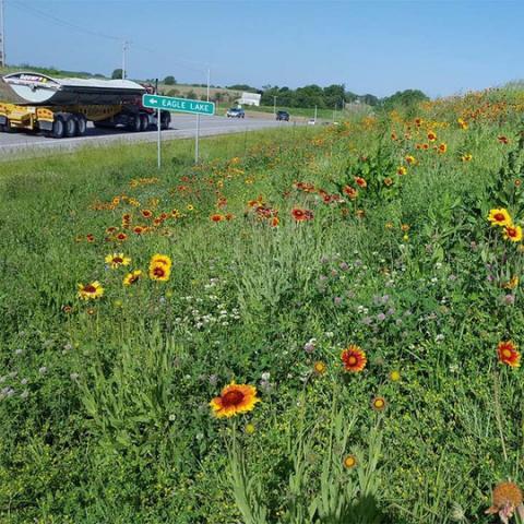 Nebraska Department of Transportation seeds roadsides
