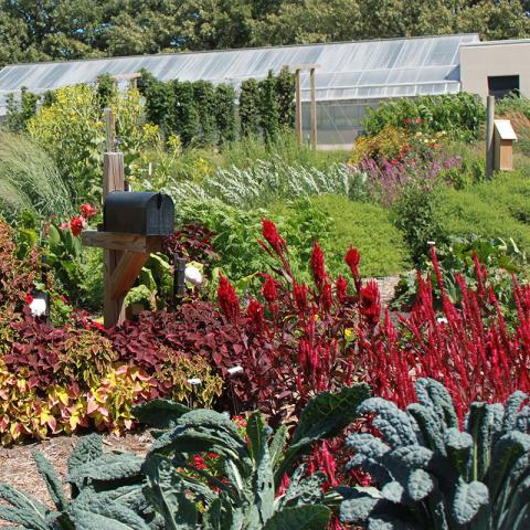 Backyard Farmer Garden, University of Nebraska–Lincoln East Campus