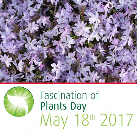 Fascination of Plants Day