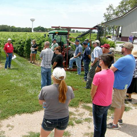 UNL Viticulture field day in Arapahoe, Nebraska