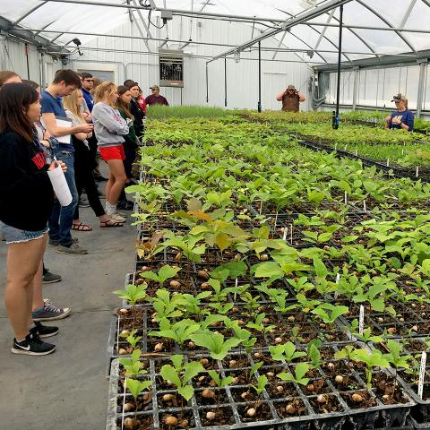 University of Nebraska–Lincoln Horticulture 221 Plant Propagation class
