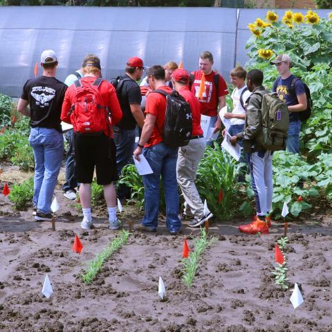 Agronomy Students in teaching garden