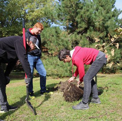Associate professor Kim Todd, right, helps two students plant a tree on Oct. 16.
