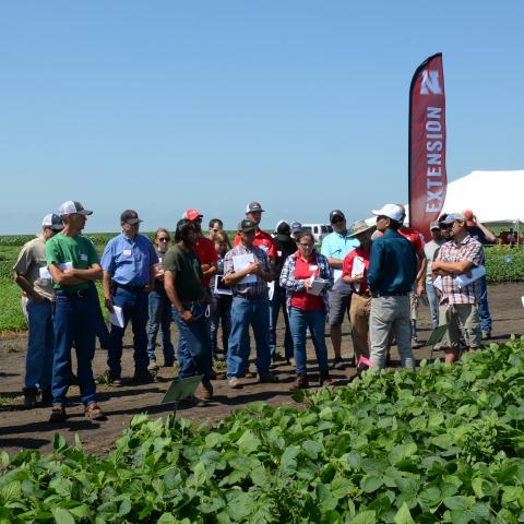 Weed Managment and Cover Crops Field Day 2018