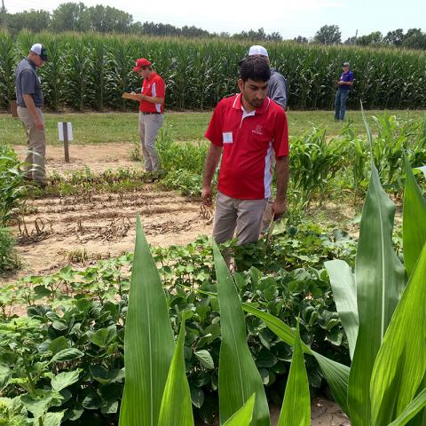 Zahoor Ganie competes for UNL Weeds Science Team