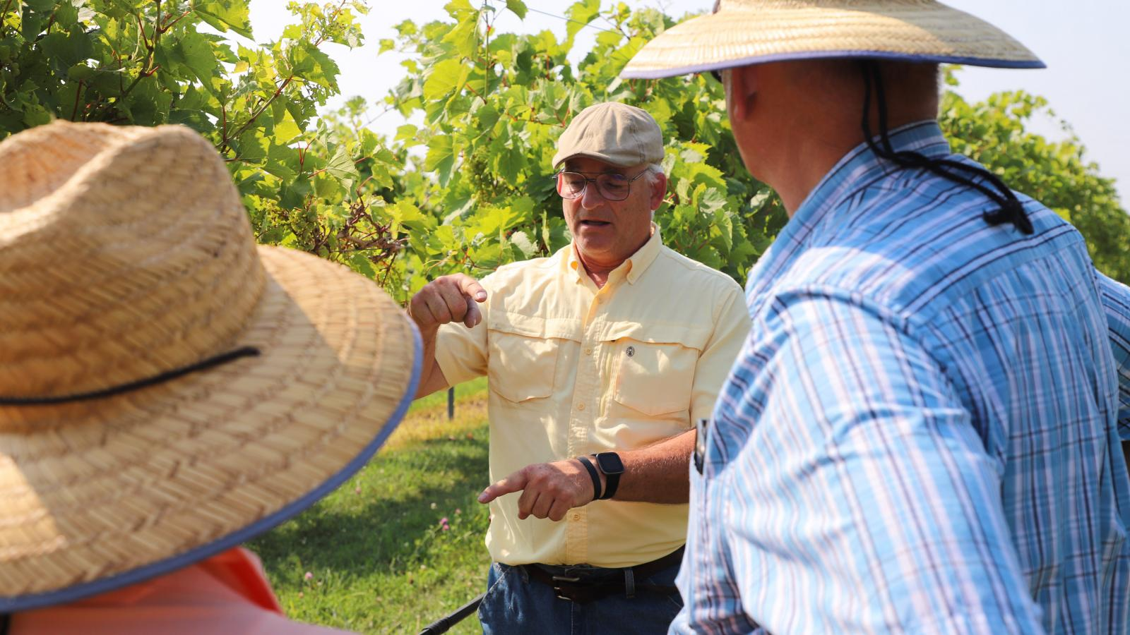 Stephen Gamet at Viticulture Field Day